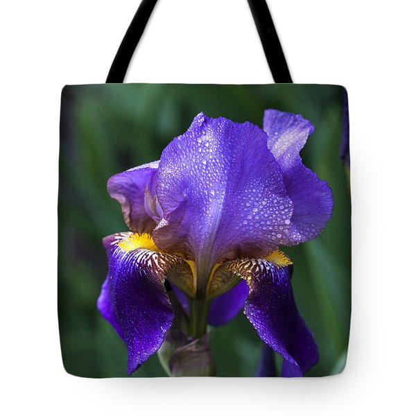Majesty Tote Bag by Doug Norkum