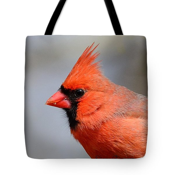 Male Cardinal Tote Bag by Diane Giurco