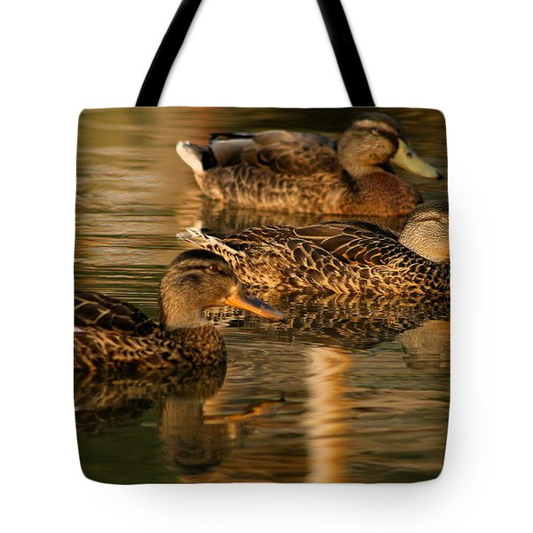 Mallards Swimming In The Water At Magic Hour Tote Bag