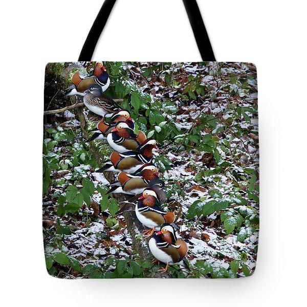 Mandarin Ducks Tote Bag