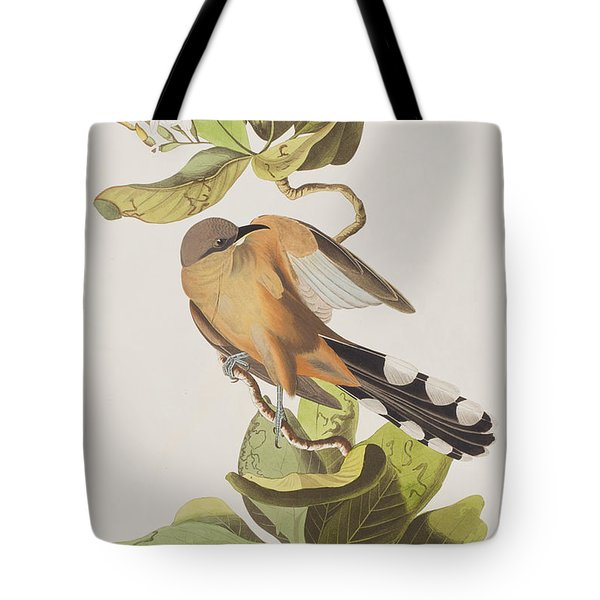 Mangrove Cuckoo Tote Bag by John James Audubon