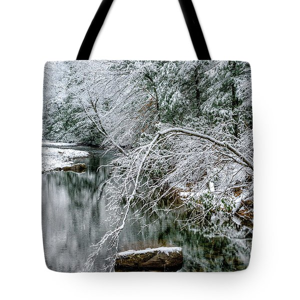 Tote Bag featuring the photograph March Snow Cranberry River by Thomas R Fletcher