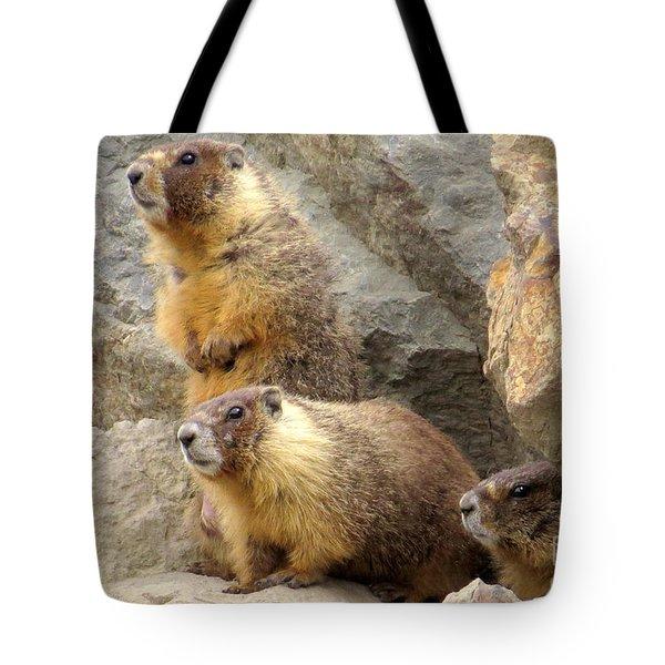 Marmot Trio Tote Bag
