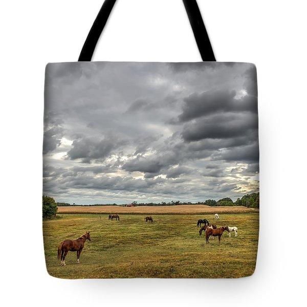 Maryland Pastures Tote Bag