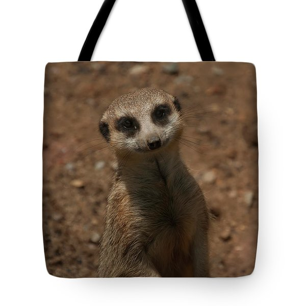 Tote Bag featuring the photograph Meerkat by Chris Flees