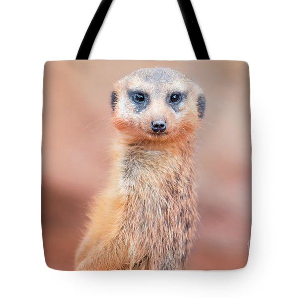 Meerkat Tote Bag by Stephanie Hayes