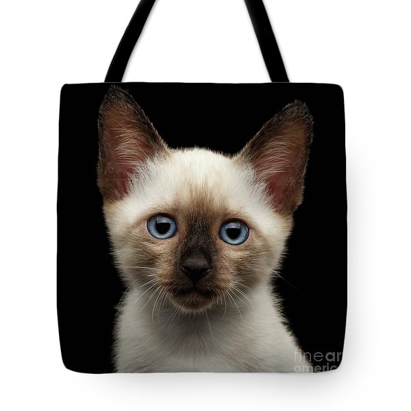 Mekong Bobtail Kitty With Blue Eyes On Isolated Black Background Tote Bag by Sergey Taran