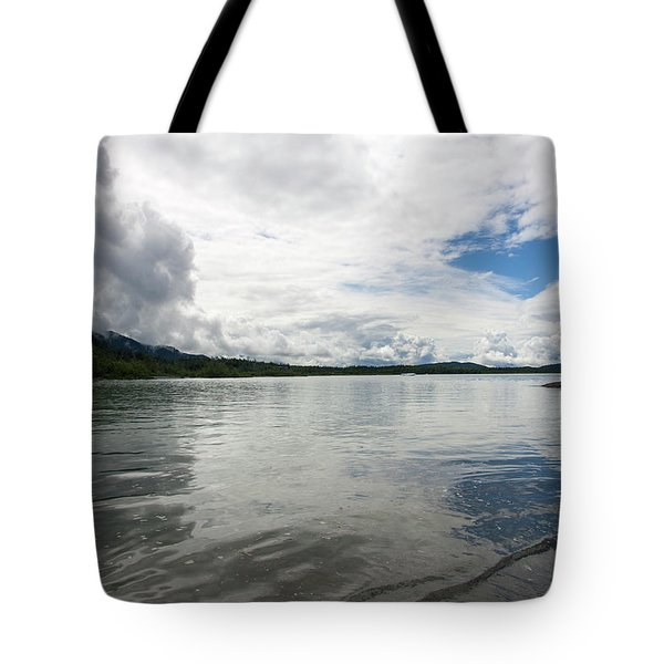 Mendenhall Lake Tote Bag