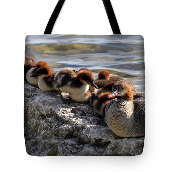Tote Bag featuring the photograph Merganser Family by Jackson Pearson