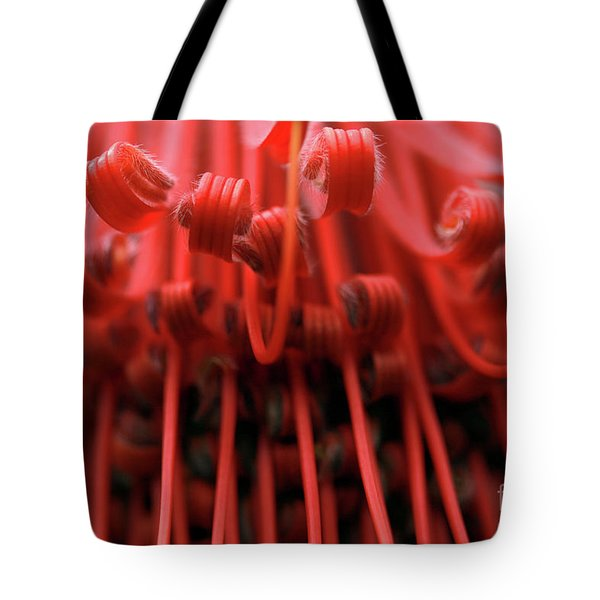 Merry Go 'round Tote Bag by Stephen Mitchell