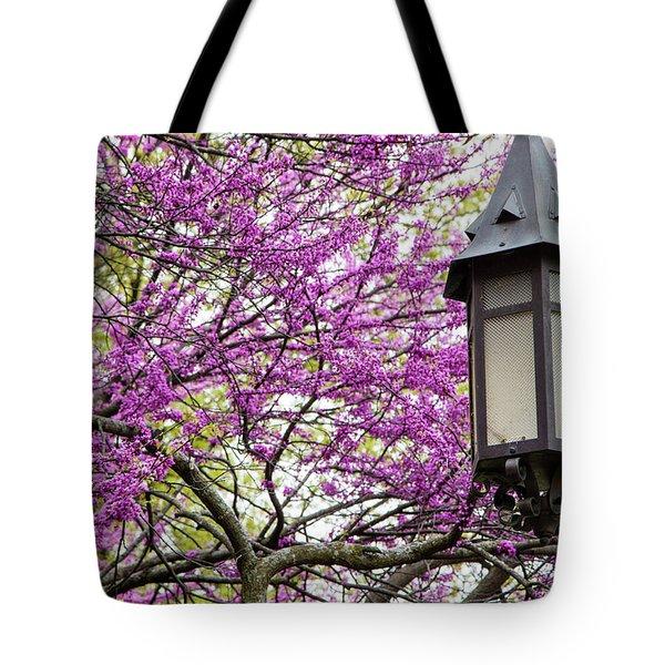 Michigan State University Spring 7 Tote Bag