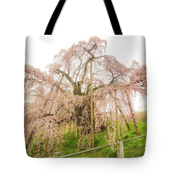 Miharu Takizakura Weeping Cherry02 Tote Bag