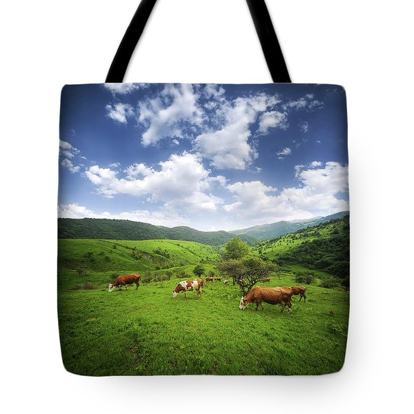 Tote Bag featuring the photograph Milka by Bess Hamiti