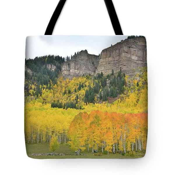 Million Dollar Highway Aspens Tote Bag