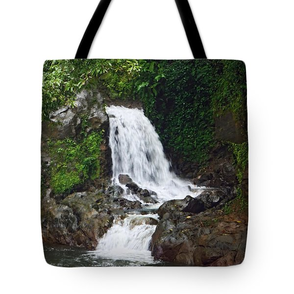 Mini Waterfall Tote Bag by Pamela Walton