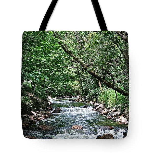 Minnehaha Creek Tote Bag