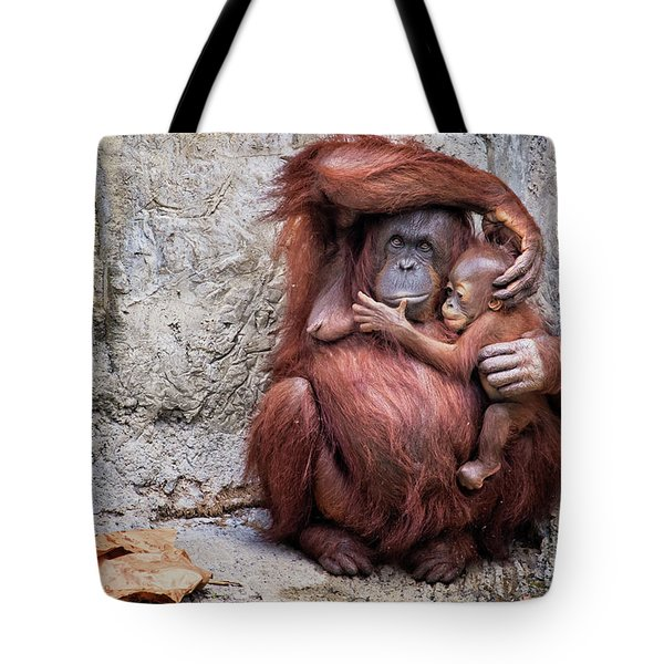 Mom And Baby Orangutan Tote Bag by Stephanie Hayes