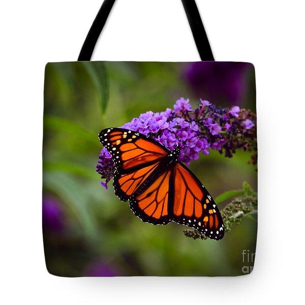Monarch Tote Bag by Brenda Bostic