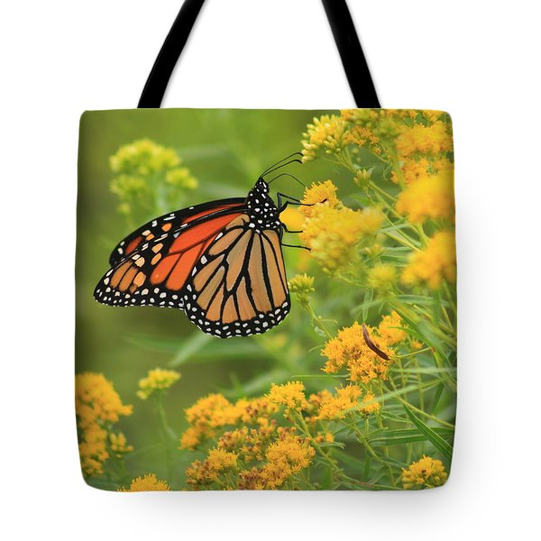 Monarch Butterfly On Goldenrod Tote Bag