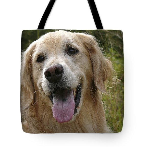 Morgie Tote Bag by Rhonda McDougall