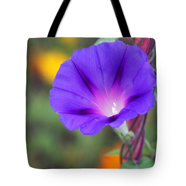 Tote Bag featuring the photograph Morning Glory by Vadim Levin