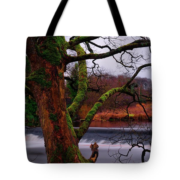 Tote Bag featuring the photograph Mossy Tree Leaning Over The Smooth River Wharfe by Dennis Dame