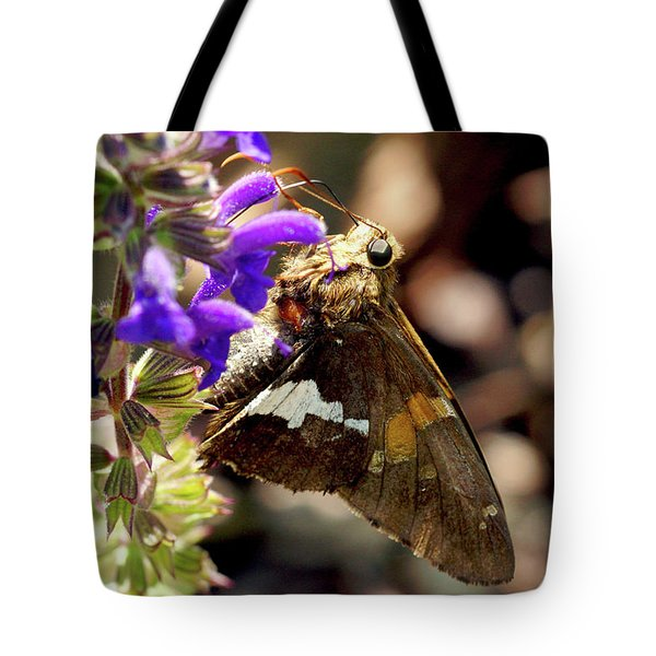 Moth Snack Tote Bag