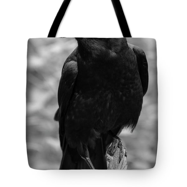 Mother Crow Tote Bag