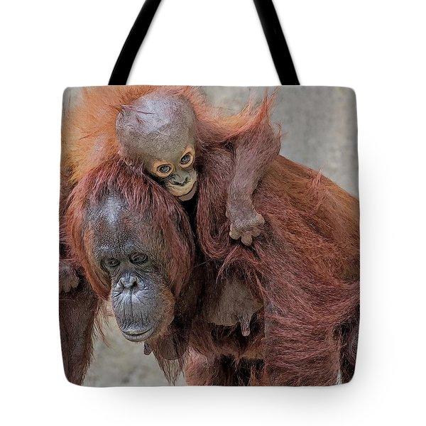 Motherhood 2 Tote Bag