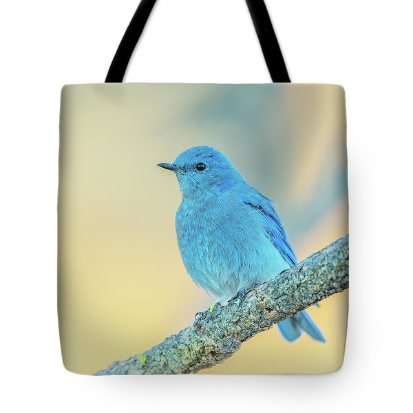 Tote Bag featuring the photograph Mountain Bluebird by Angie Vogel