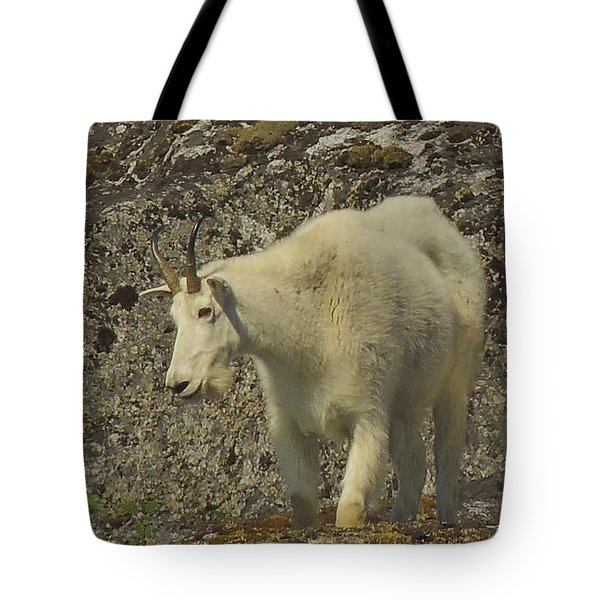 Mountain Goat Ewe Tote Bag