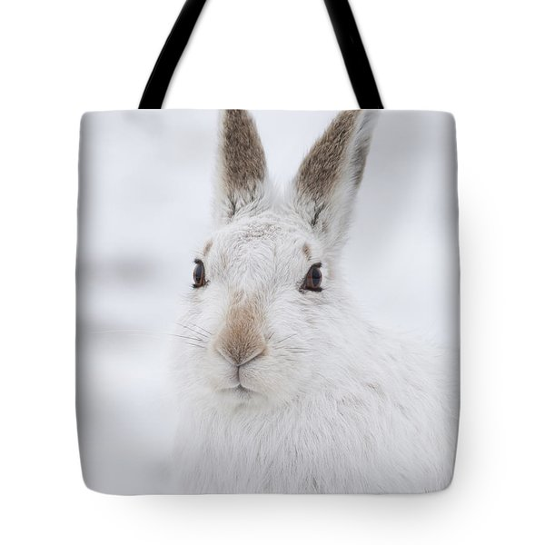 Mountain Hare In The Snow - Lepus Timidus  #1 Tote Bag