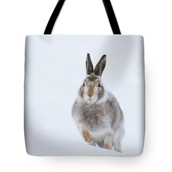 Tote Bag featuring the photograph Mountain Hare - Scotland by Karen Van Der Zijden