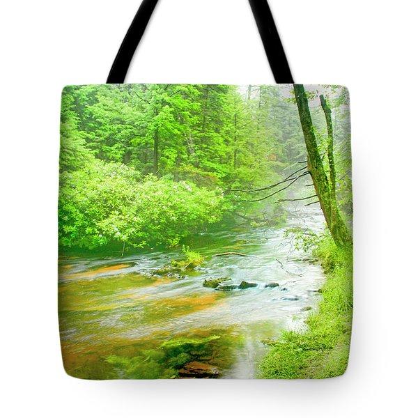 Mountain Stream, Pocono Mountains, Pennsylvania Tote Bag