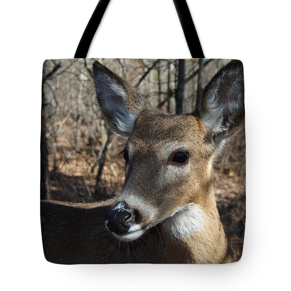 Mr. Cool Tote Bag by Bill Stephens