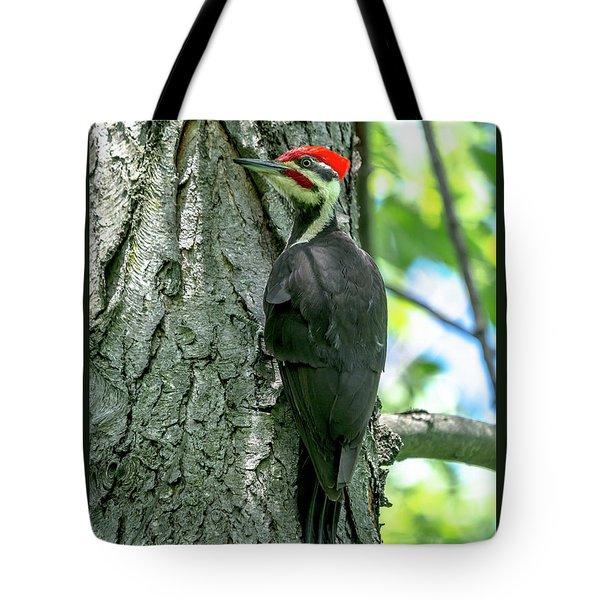 Mr. Pileated Woodpecker Tote Bag