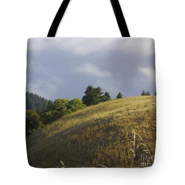 Mt. Tamalpais Study #1 Tote Bag