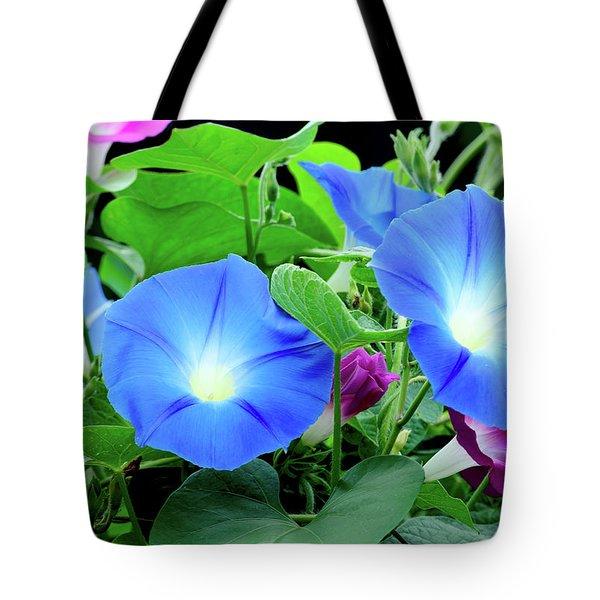 My Morning Glory Tote Bag