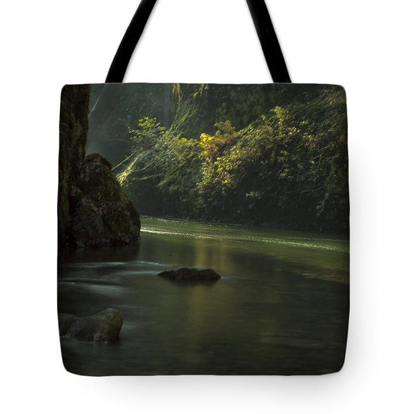 Mystical Canyon Signed Tote Bag