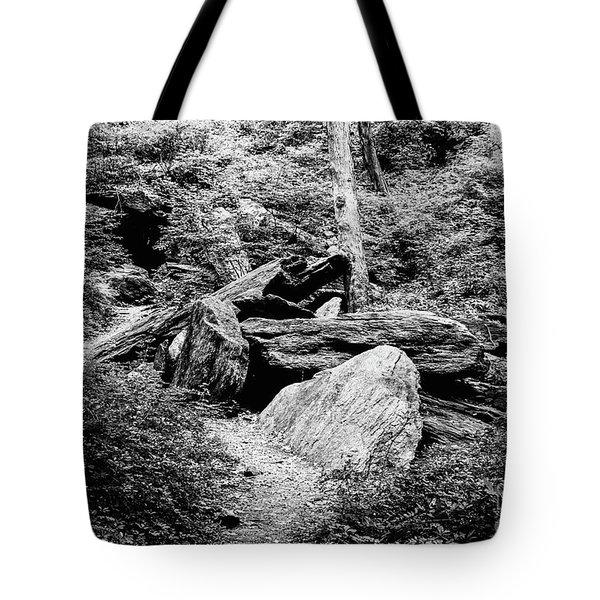Native American Caves  Tote Bag