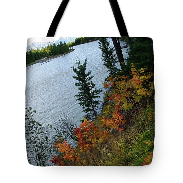 Natural Art Tote Bag by Rhonda McDougall