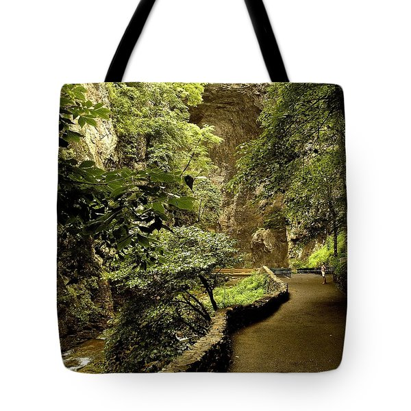Tote Bag featuring the photograph Natural Bridge  by Raymond Earley