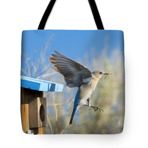 Nest Builder Tote Bag by Mike Dawson