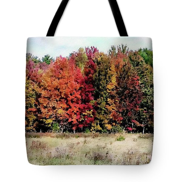 Tote Bag featuring the photograph New Hampshire's True Colors by Joseph Hendrix