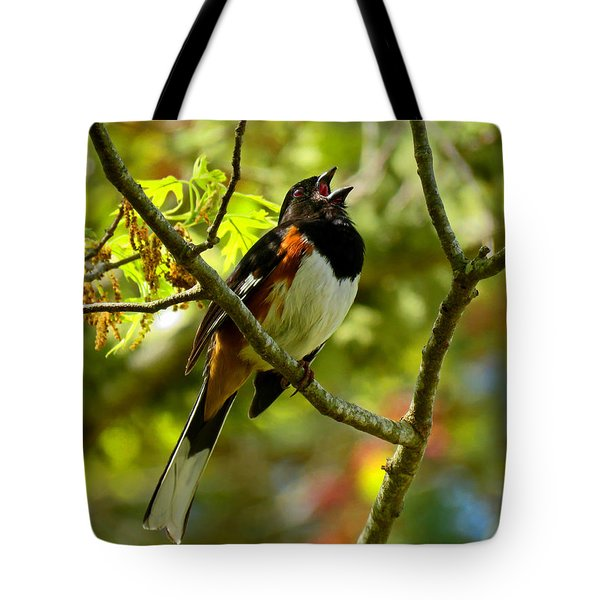 Towhee In Song Tote Bag by Dianne Cowen
