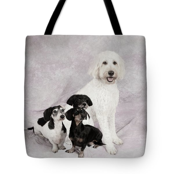 Fur Friends Tote Bag by Erika Weber