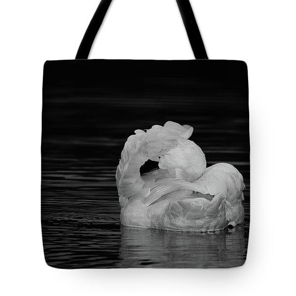 No Pictures Please Tote Bag