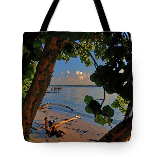 Tote Bag featuring the photograph 1- North Palm Beach by Joseph Keane