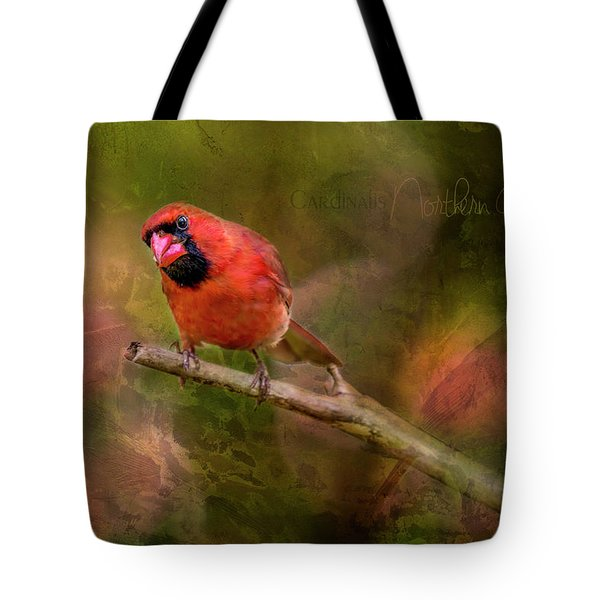 Northern Cardinal Tote Bag by Irwin Seidman
