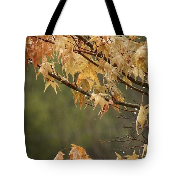 Tote Bag featuring the photograph November Rain by Edwin Alverio